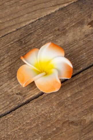 Haarspange Plumeria Hawaii Blüte, orange von Rockabilly Rules